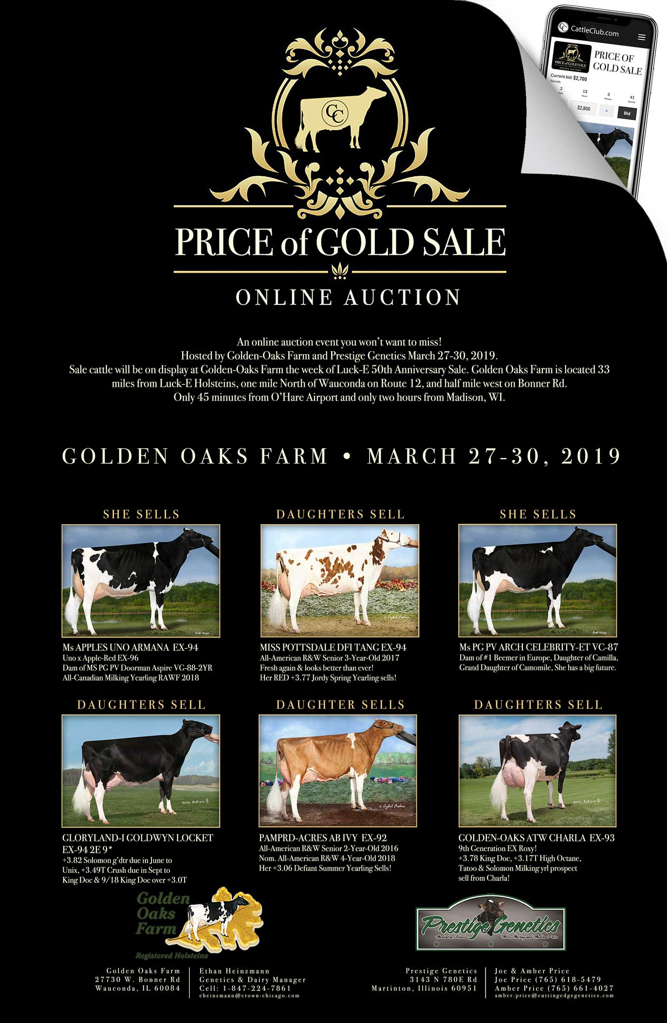 Price of Gold Sale Announced at Golden Oaks Farm