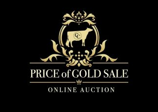 Price of Gold Sale