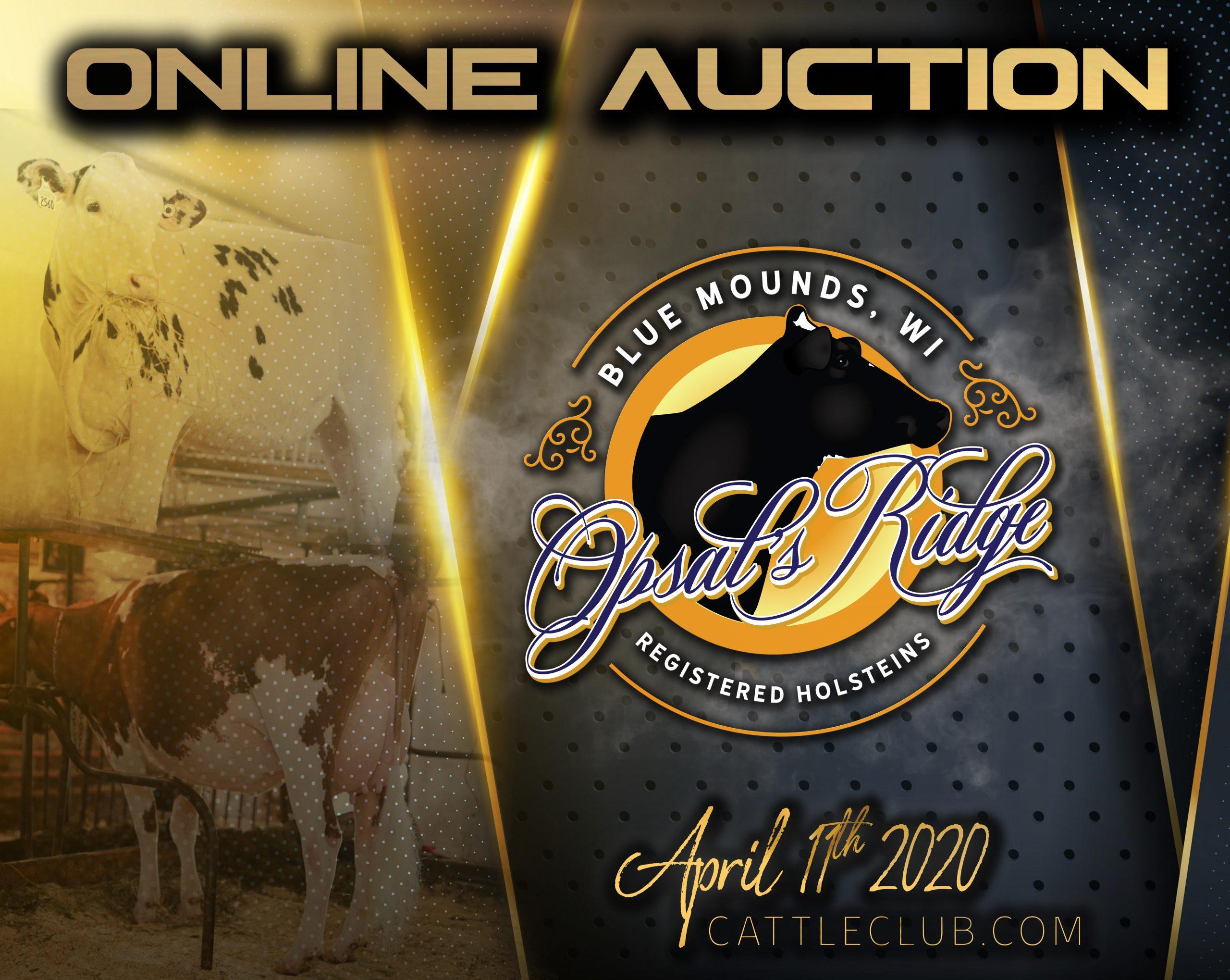 Opsal's Ridge Auction