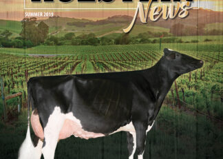 Rights to the COVER of the 2020 California Holstein News