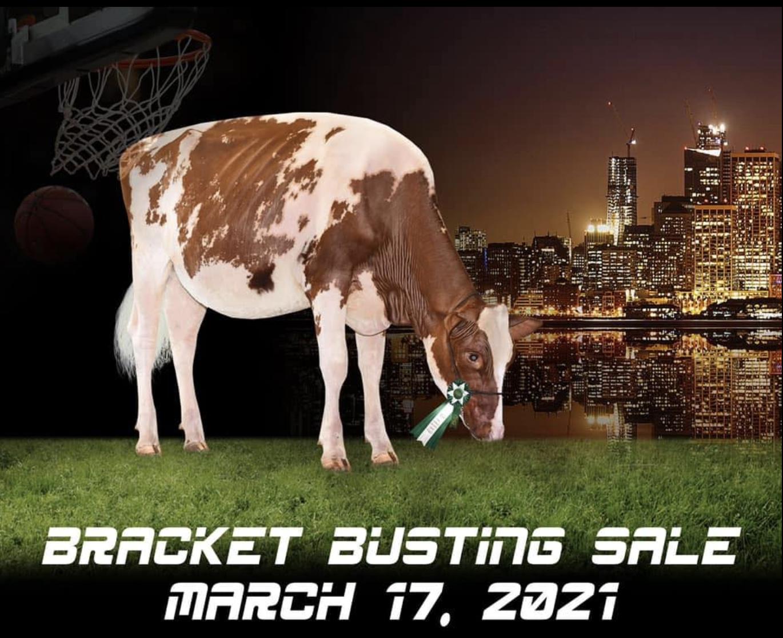 Bracket Busting 3.0 Sale Logo