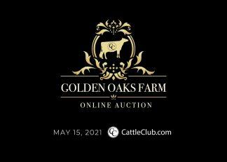 Golden Oaks Farm
