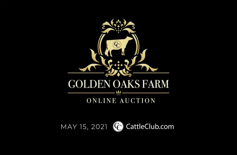 Golden Oaks Online Auction