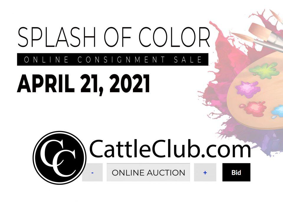 Splash of Color Consignment Sale
