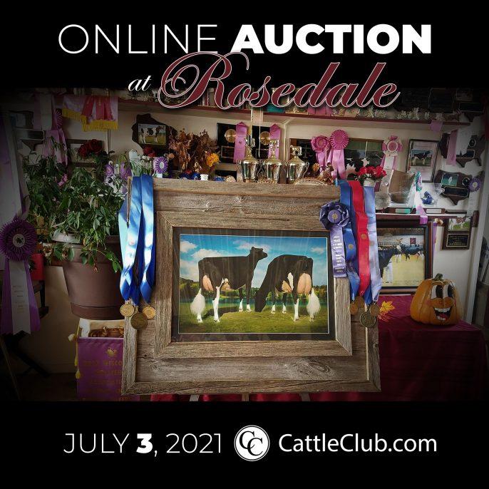 Rosedale-ONLINE-AUCTION-D3