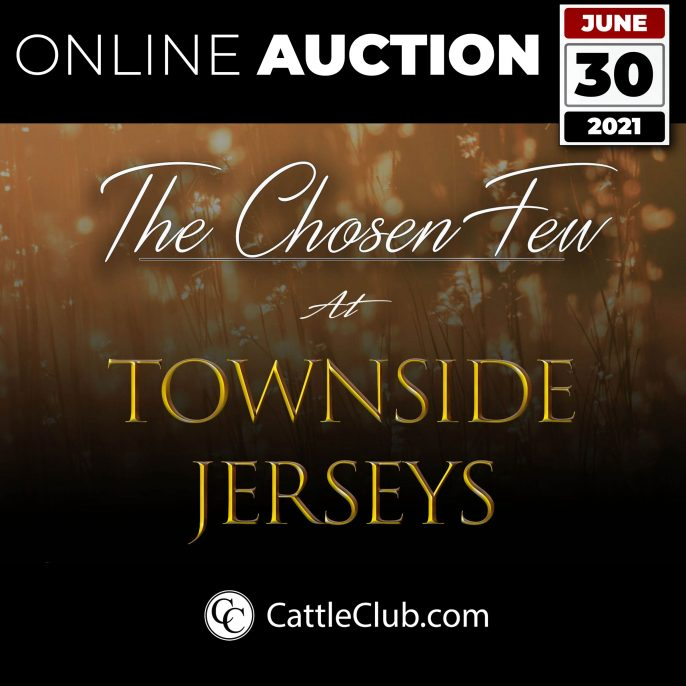 Townside-ONLINE-AUCTION